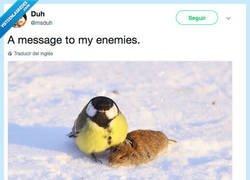 Enlace a Un mensaje para mis enemigos, por @msduh