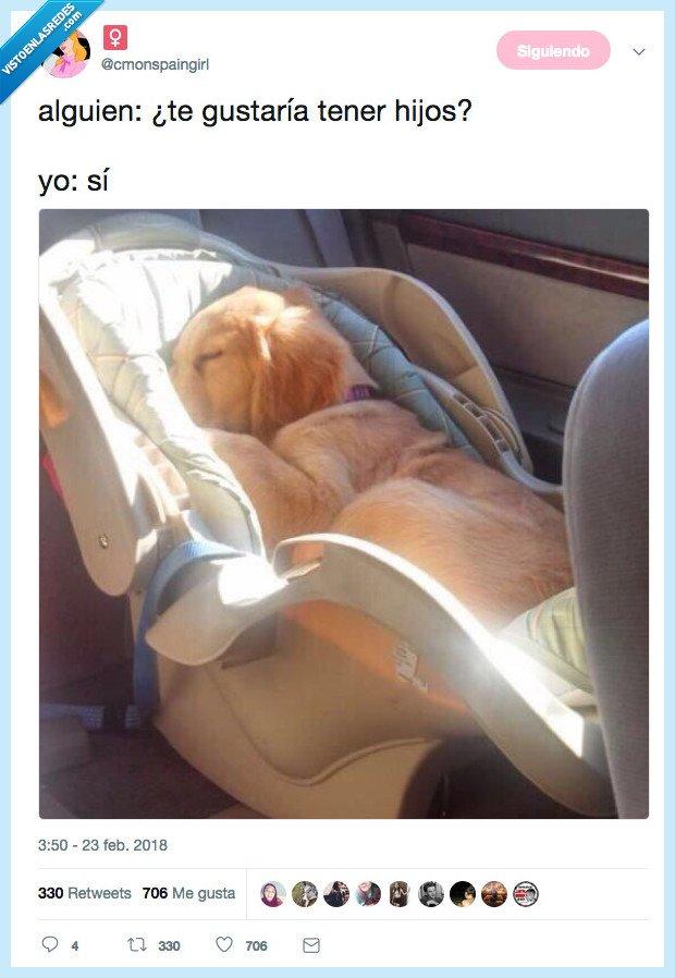 hiujo,perro,tener