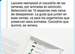 Enlace a Lacoste cambia el típico cocodrilo de sus polos por una buena acción,  por @serpientedegas