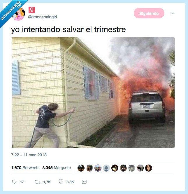 intentando,quemar,salvar,trimestre