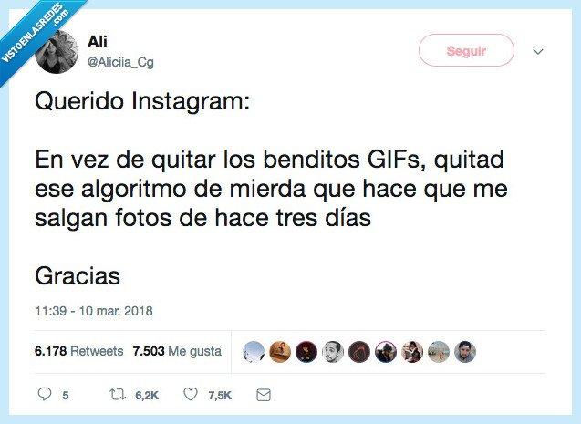 algoritmo,gifs,instagram