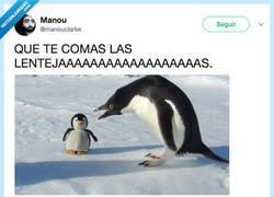 Enlace a Mama pingüina se enfada, por @manouclarke