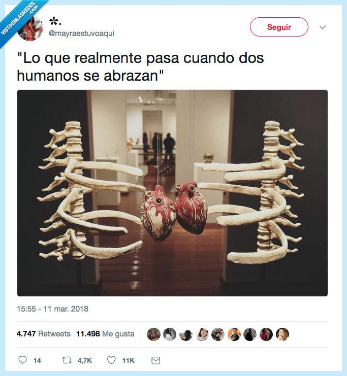 abraza,anatomía