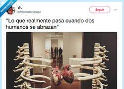 Enlace a Anatomía de un abrazo, por @mayraestuvoaqui