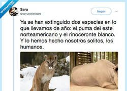 Enlace a VIVA EL SER HUMANO (ironía mode on), por @soyuncharizard