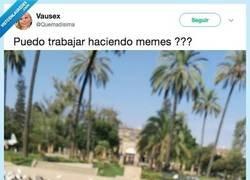 Enlace a Le hace un meme a una paloma y le queda fetén, por @Quemadisima