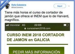 Enlace a Vaya huevos los de Pablo Casado, por @Rafacalabeira
