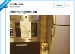 Enlace a Ahora quieres uno así en tu cocina, por @pacoelmag0