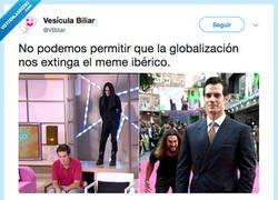 Enlace a El meme ibérico vive la lucha sigue, por @VBiliar