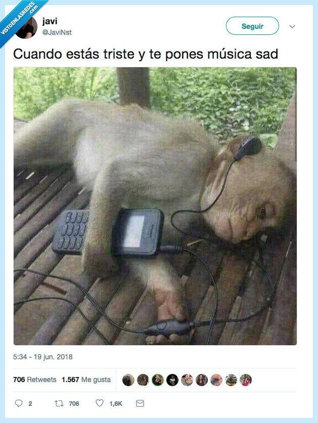 monete,sad music,triste