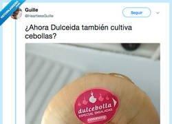 Enlace a Ya está Dulceida poniéndole nombres a las cosas, por @nataliacorbellx