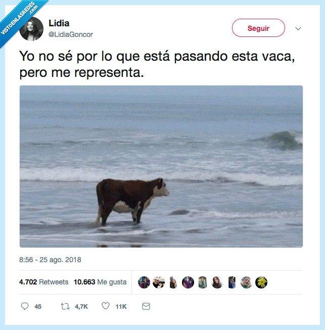 friend,hello darkness,vaca