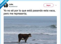 Enlace a Hello darkness old my friend, por @LidiaGoncor