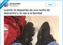 Enlace a Todavía le dura la papa, por @guinguardian