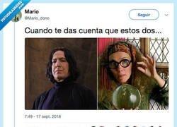 Enlace a Harry Potter y el culebrón venezolano, por @Mario_dono