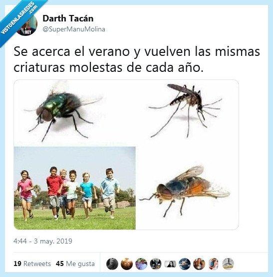 criaturas,molestar,molestias,molestos,moscas,mosquitos,niños,verano