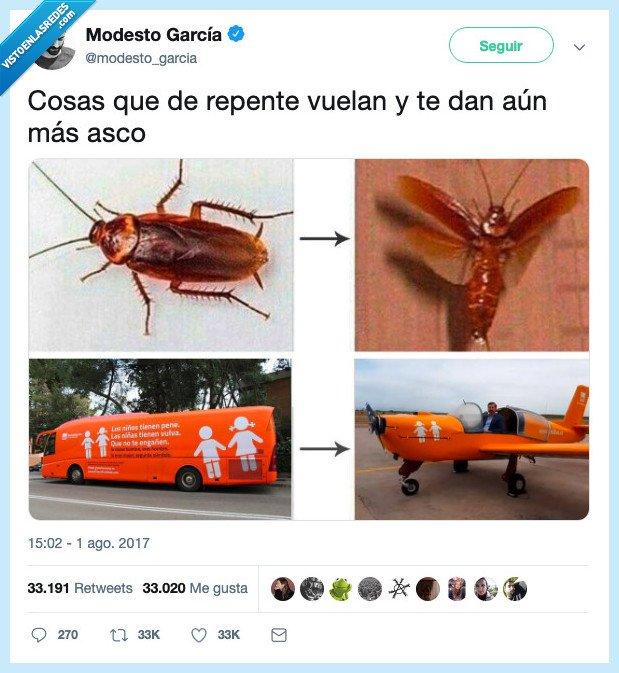 asco,autobus,avioneta,cucaracha,hazte oir