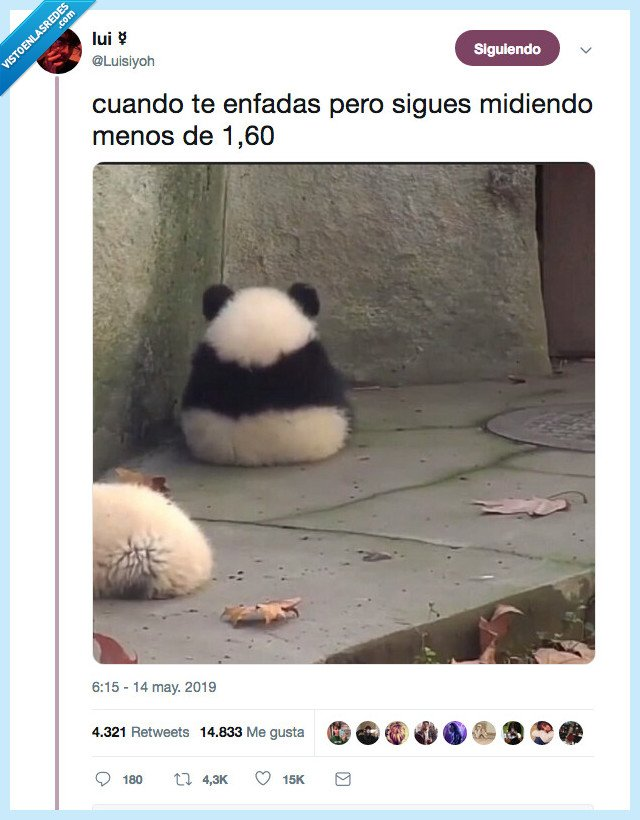 cabreada,najita,panda