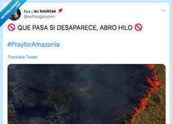 Enlace a El Amazonas está ARDIENDO y nadie está hablando de las consecuencias devastadoras que nos traerá, por @softsugaryoon
