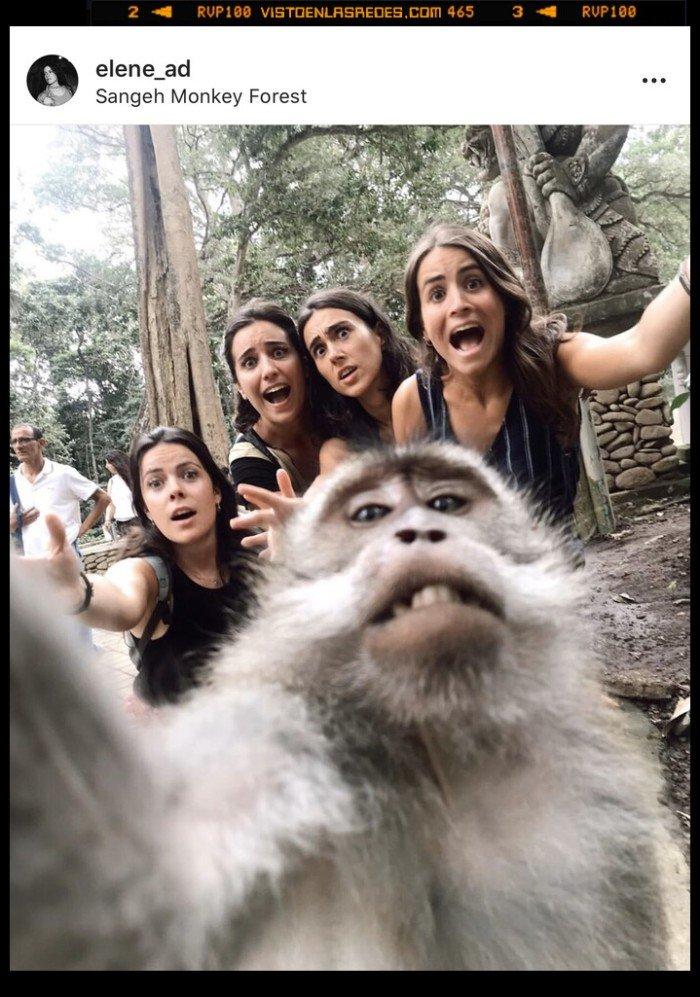 mono,móvil,selfie