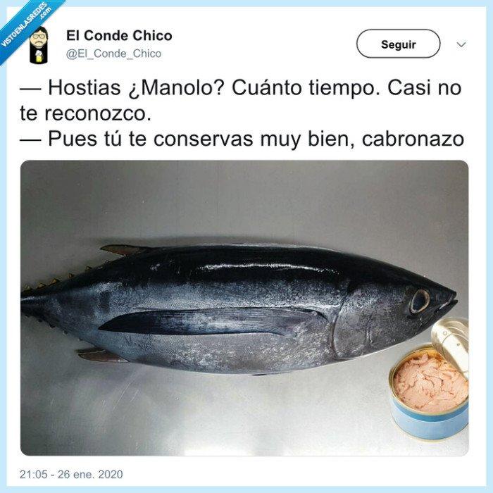 atún,conserva,lata,pescado
