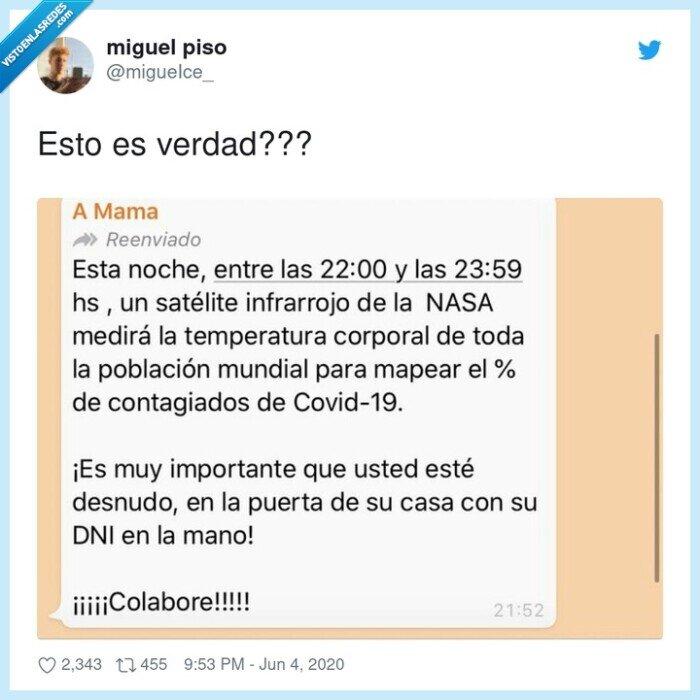 bulo,mensaje,whatsapp