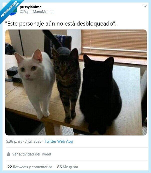 desbloquear,gatos,personaje