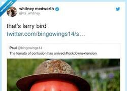 Enlace a Si no conocéis a Larry Bird, buscadlo en Google y veréis, por @its_whitney