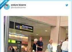 Enlace a Cuidado si te haces maletas con tu cara, son muy creepy, por @ordurebizarree