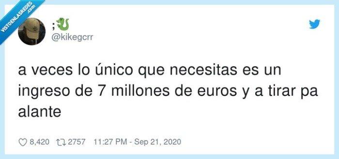 euros,ingreso,millones,necesidad