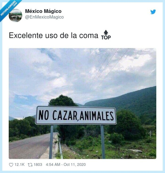 animales,cartel,cazar,coma