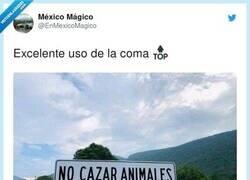Enlace a Las clases online están sirviendo de algo, por @EnMexicoMagico