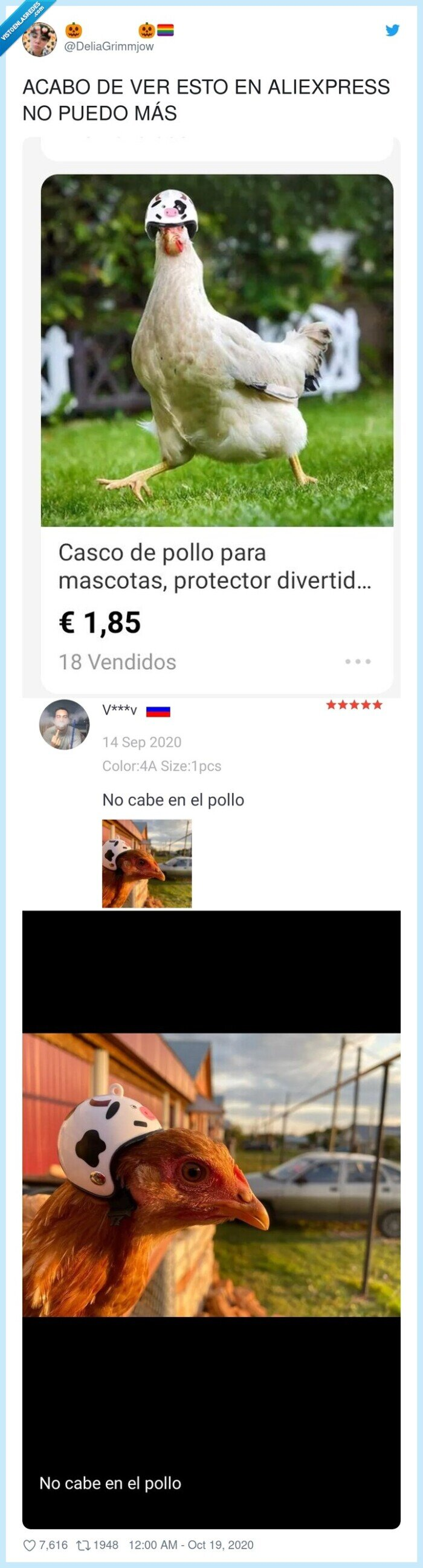 aliexpress,cascos,gallina,pollo