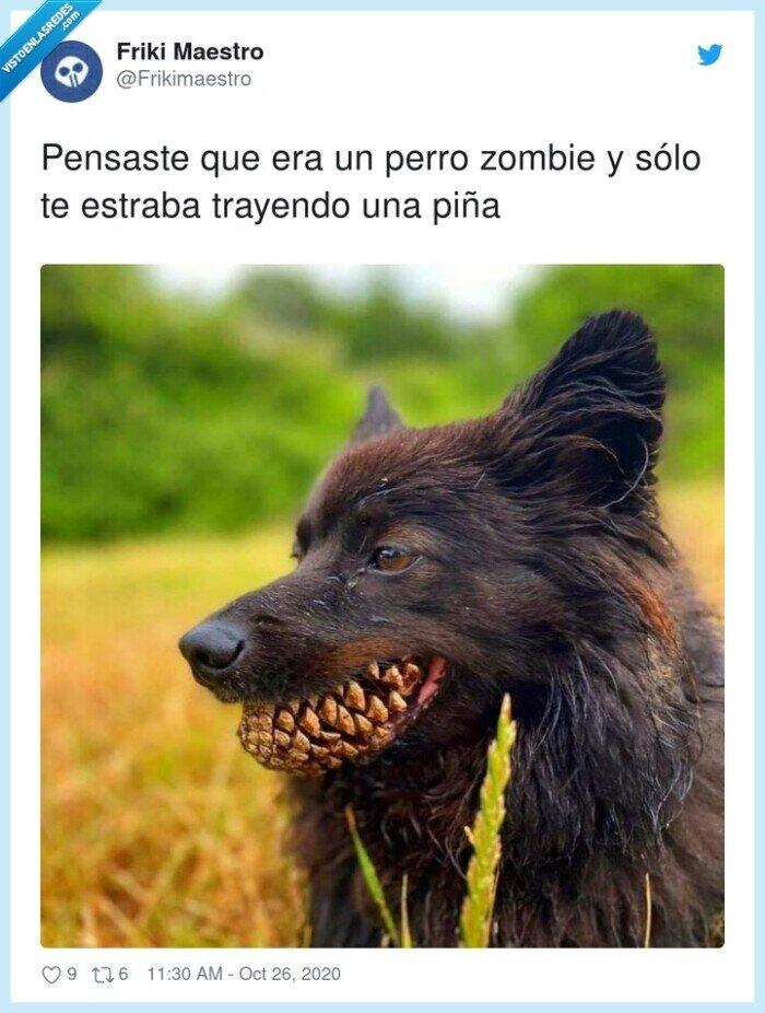 ilusión,óptica,perro,piña,zombie