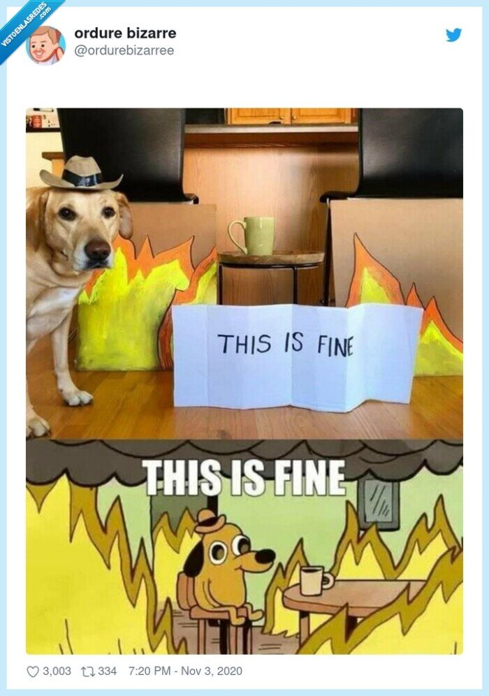 fine,fuego,llamas,meme,perro,real