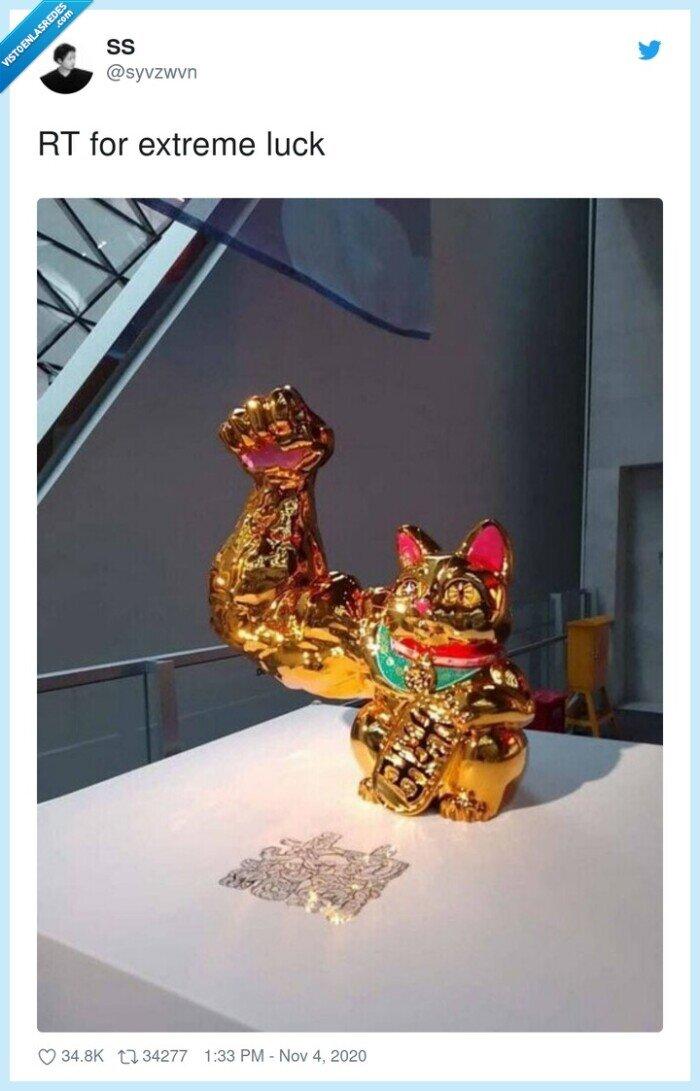 brazo,chino,gato,oficina