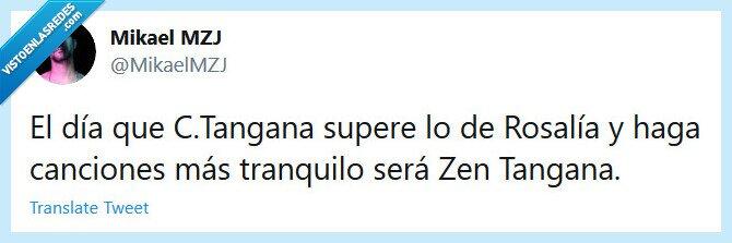 Amor,C.Tangana,Dolor,Superar,Tranquilo,Zen