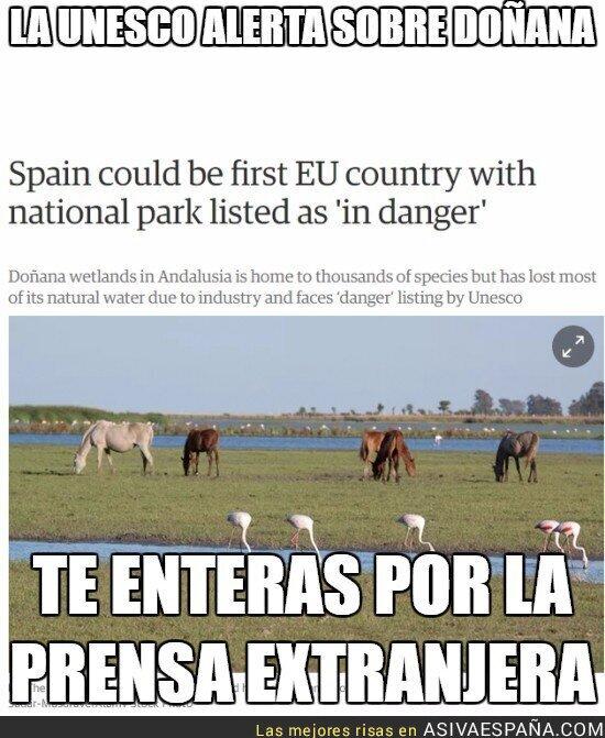 53423 - La UNESCO alerta sobre Doñana