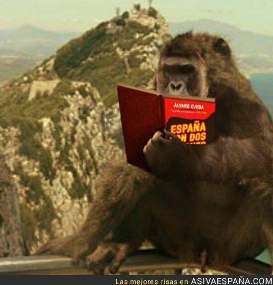53664 - El lector medio de su libro por @__tuan__