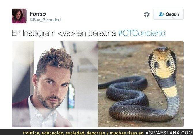 56459 - Los mejores memes de la cobra de Bisbal a Chenoa, ¡lo ha comentado hasta Errejón!