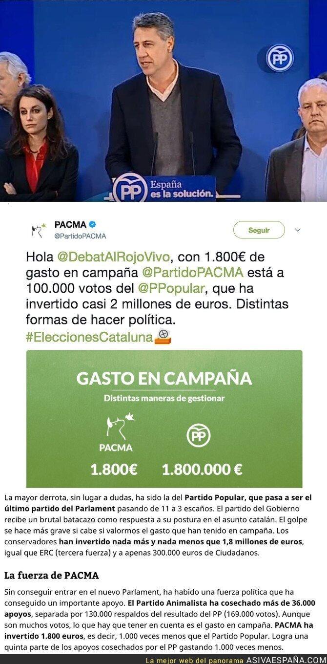 80465 - PACMA se queda a 100.000 votos del PP en Catalunya gastando 10.000 veces menos