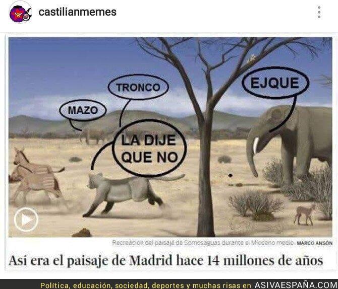 90836 - Madrid en sus años, por @castilianmemes