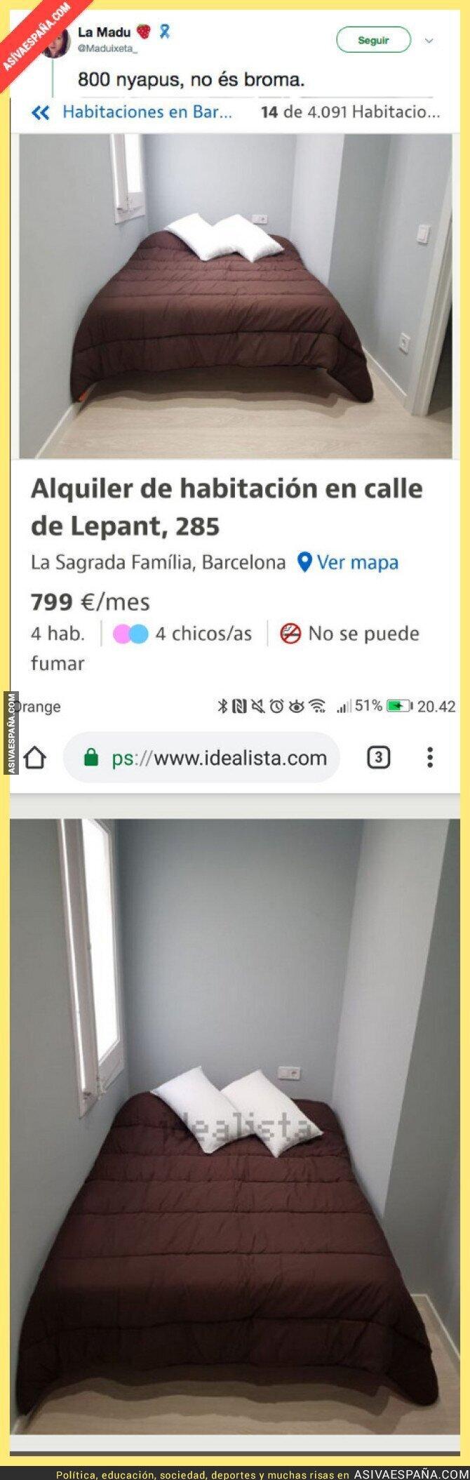 93450 - Hay timos en la vida y luego está intentar alquilar un piso en Barcelona