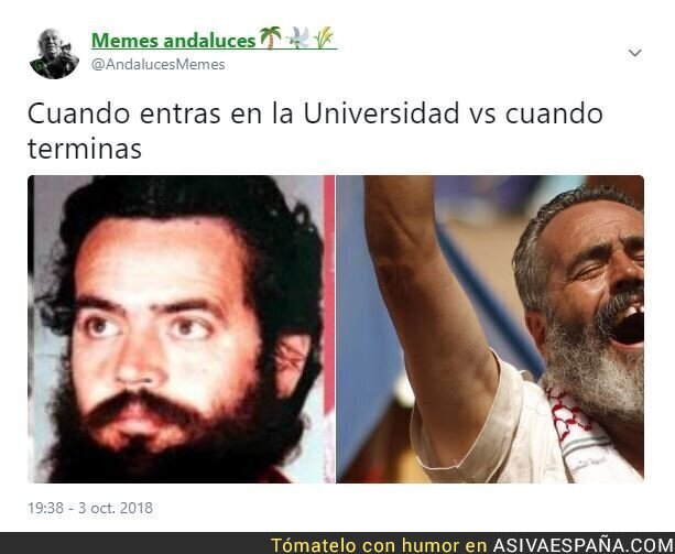 94182 - La universidad en España