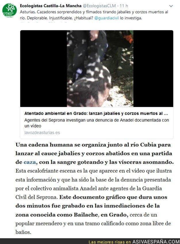 94192 - Atentado ambiental en Grado: lanzan jabalíes y corzos muertos al río Cubia