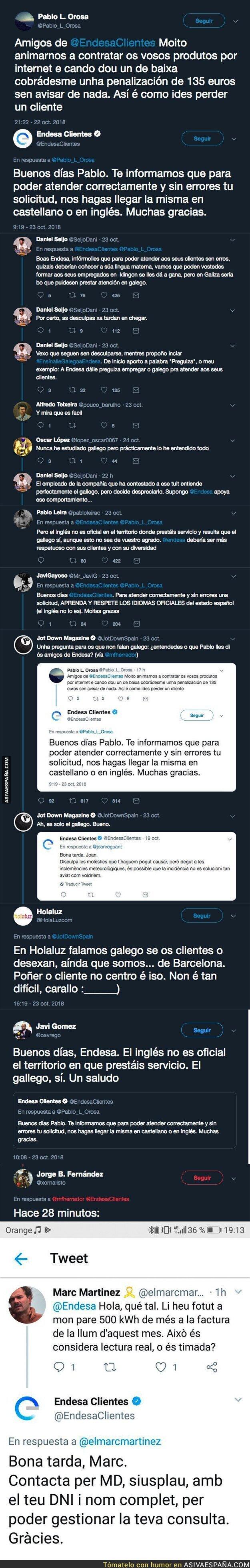 95913 - Gran polémica por este desplante de Endesa a uno de sus clientes por hacerle llegar una consulta en gallego