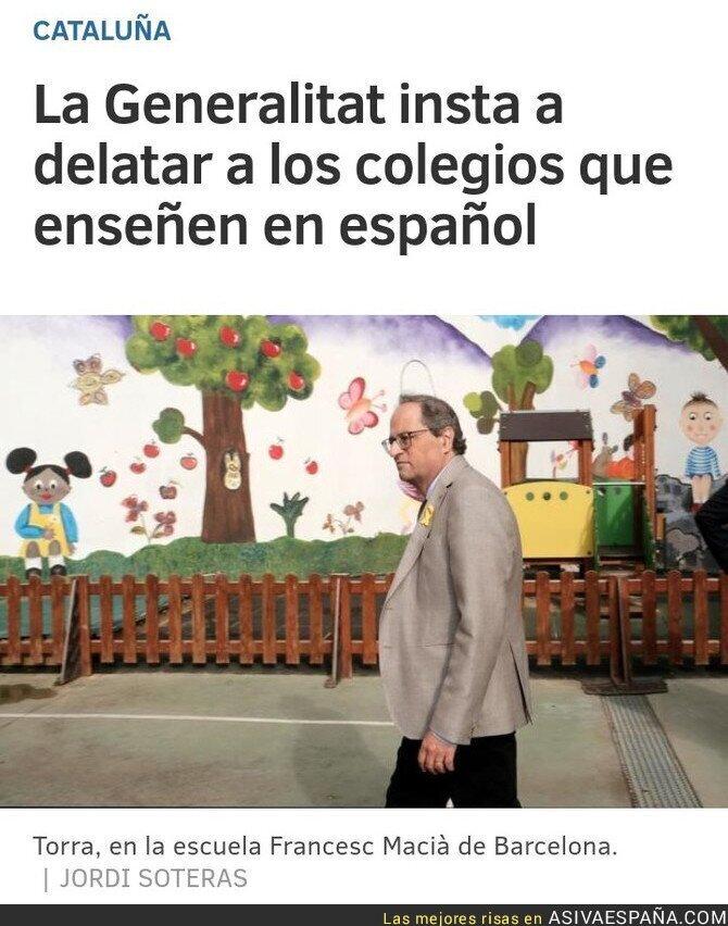 96484 - ¿Se quejarán ahora esos catalanes que no veían bien hacer efectivas las horas de castellano de su modelo también por esto?