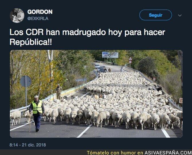 100920 - Los CDR ya están en marcha