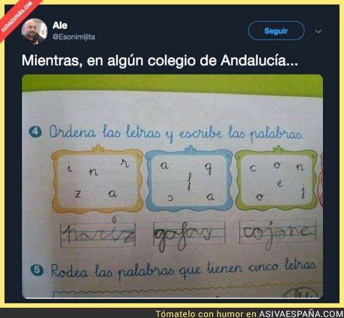 103191 - La educación en Andalucía