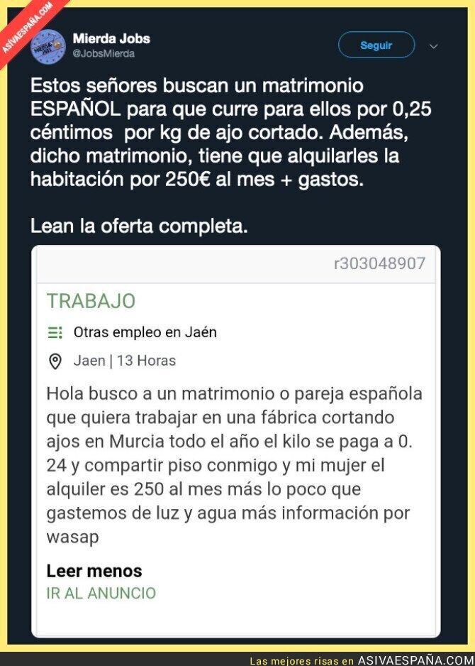112098 - La oferta de trabajo cortando ajos en Murcia que estabas esperando